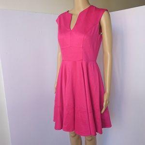 NWT Hot Pink Shoshanna Dress Size 4